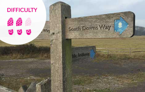South Downs Hike